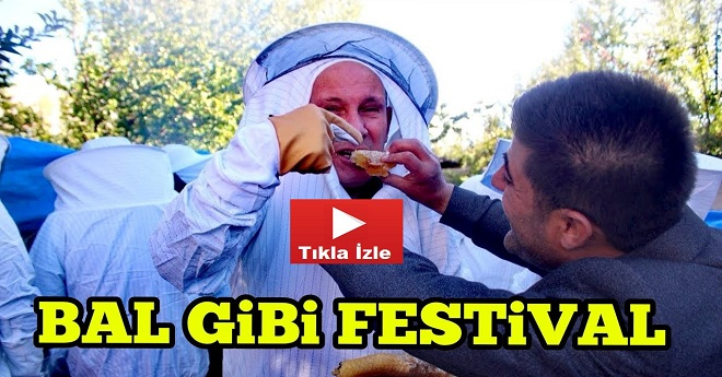 Van'da Organik Karakovan Bal Kesimi Festivali