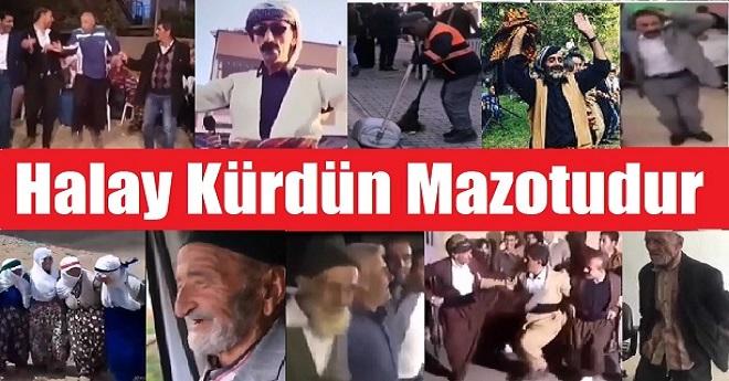 En Komik Kürtçe Halaylar