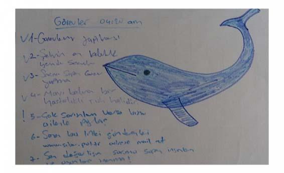 Mavi Balina Oyunu Van